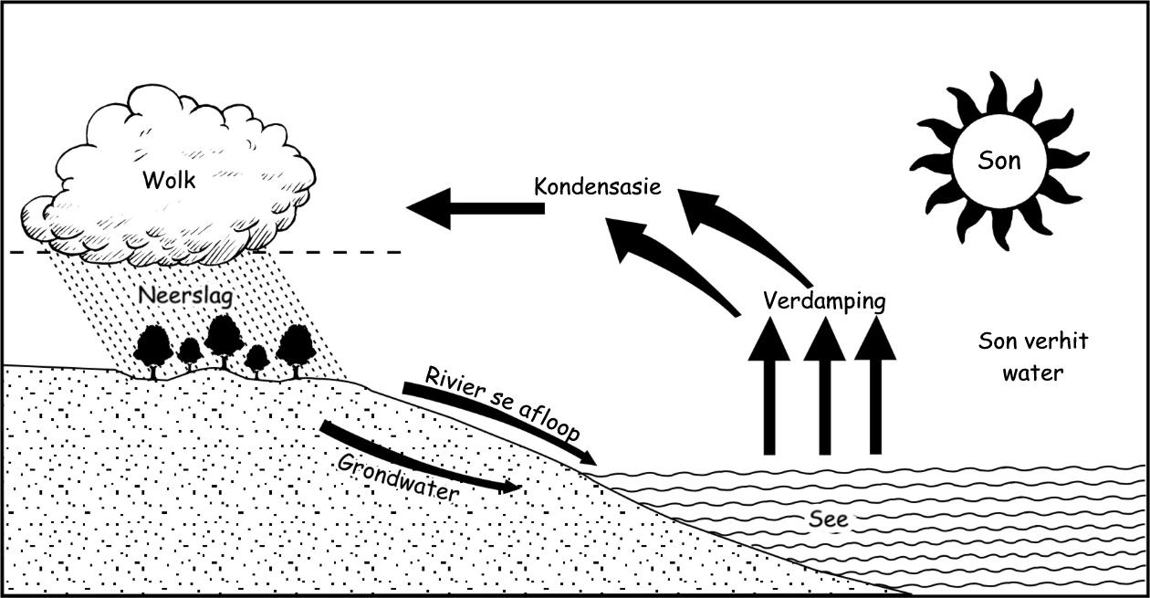 assessering  die belangrikheid van water  by openstax