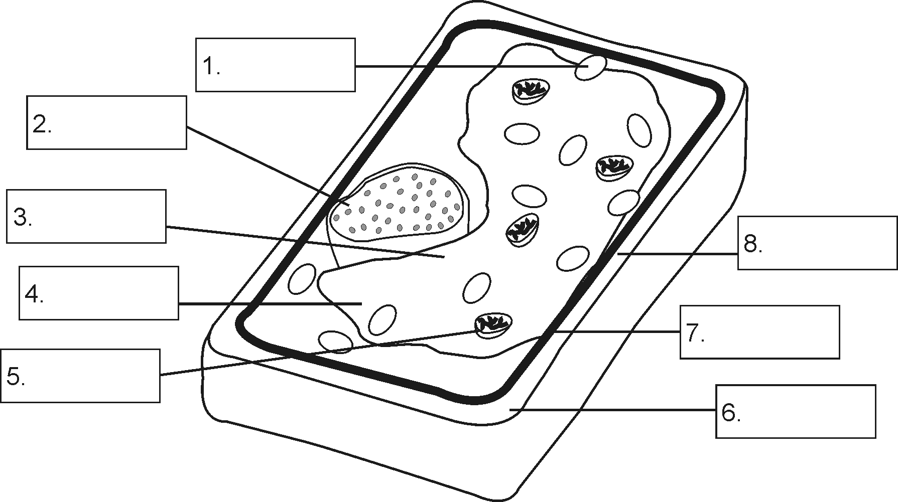 28+ [ A Typical Animal Cell Worksheet ...