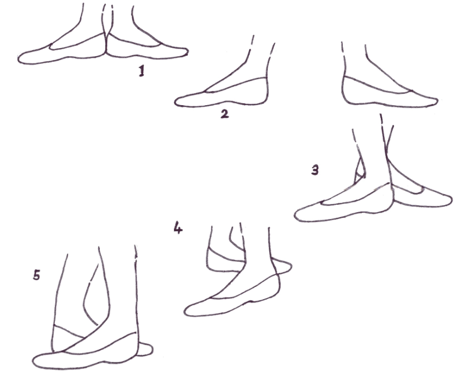 basic positions dance ballet by openstax quizover com