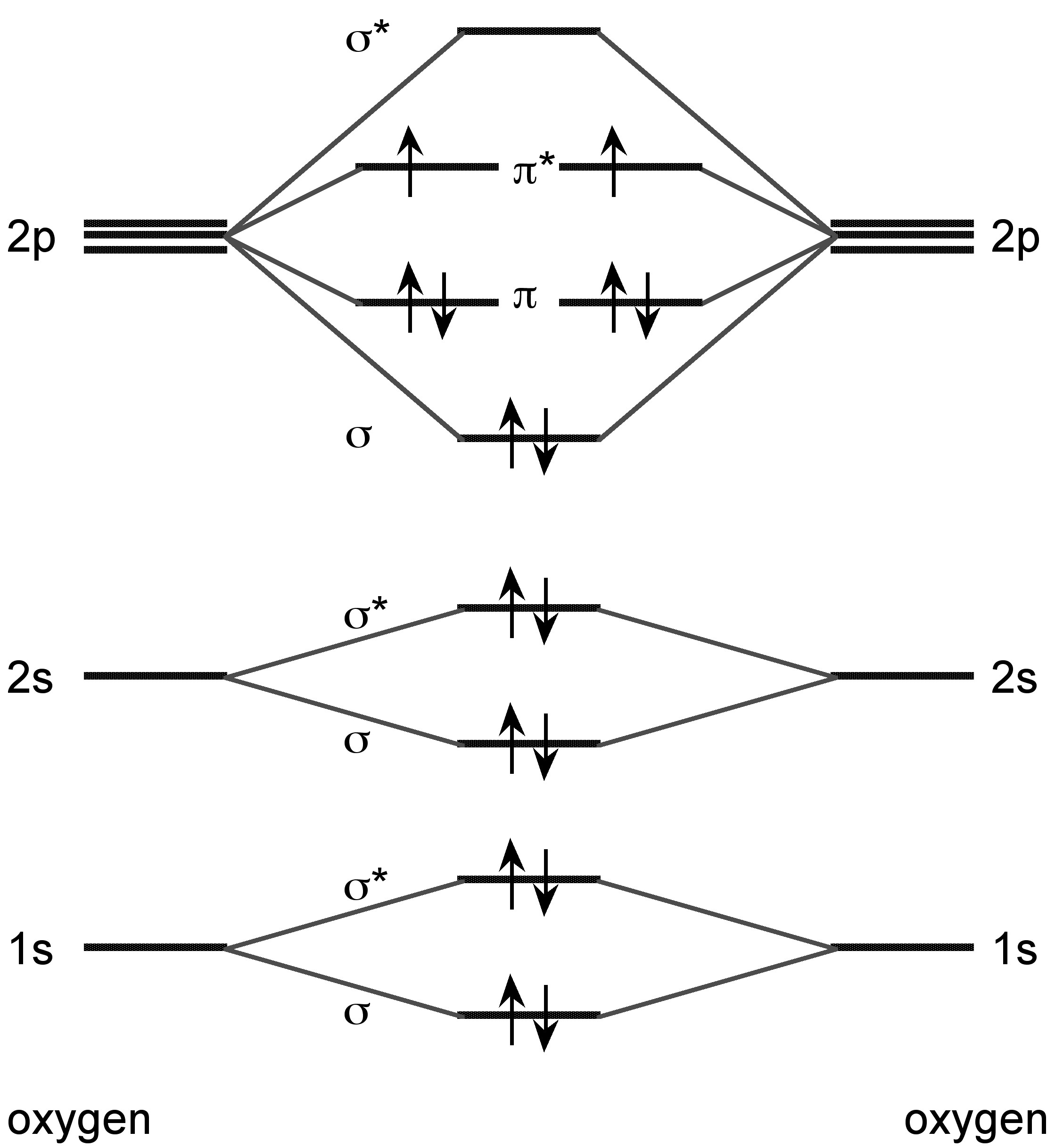 Catenation the group 16 elements the chalcogens by openstax molecular orbital diagram for the formation of o 2 pooptronica Image collections