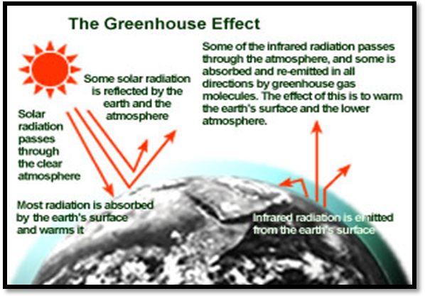 reaction paper t climate change Causes of climate change climate change is a long-term shift in weather conditions identified by changes in temperature the impossible movie reaction paper.