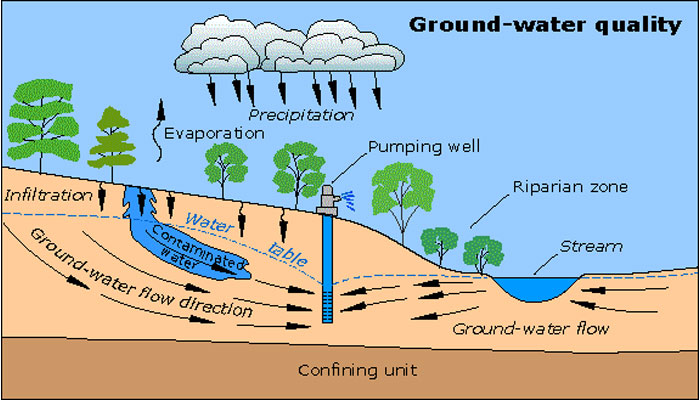 diagram of Contaminant Plume in Groundwater