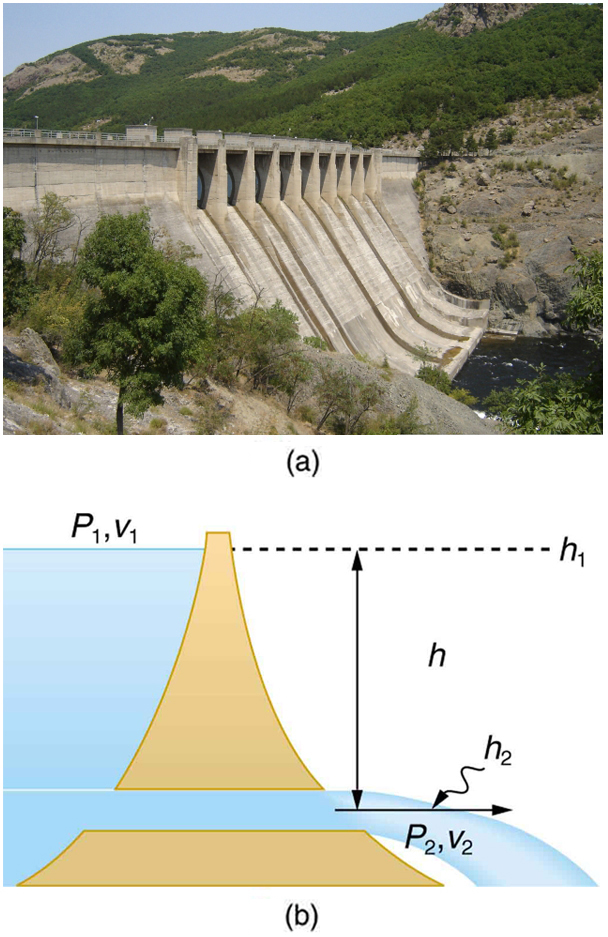 Part a of the figure shows a photograph of a dam with water gushing from a large tube at the base of a dam. Part b shows the schematic diagram for the flow of water in a reservoir. The reservoir is shown in the form of a triangular section with a horizontal opening along the base little near to the base. The water is shown to flow through the horizontal opening near the base. The height which it falls is shown as h two. The pressure and velocity of water at this point are P two and v two. The height to which the water can fall if it falls from a height h above the opening is given by h 2. The pressure and velocity of water at this point are P one and v one.
