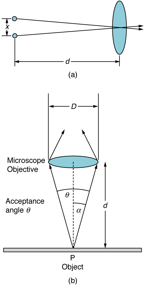 Part a of the figure shows two small objects arranged vertically a distance x one above the other on the left side of the schematic. On the right side, at a distance lowercase d from the two objects, is a vertical oval shape that represents a convex lens. The middle of the lens is on the horizontal bisector between the two points on the left. Two rays, one from each object on the left, leave the objects and pass through the center of the lens. The distance d is significantly longer than the distance x. Part b of the figure shows a horizontal oval representing a convex lens labeled microscope objective that is a distance lowercase d above a flat surface. The oval's long axis is of length capital D. A point P is labeled on the plane directly below the center of the lens, and two rays leave this point. One ray extends to the left edge of the lens and the other ray extends to the right edge of the lens. The angle between these rays is labeled acceptance angle theta, and the half angle is labeled alpha. The distance lowercase d is longer than the distance capital D.