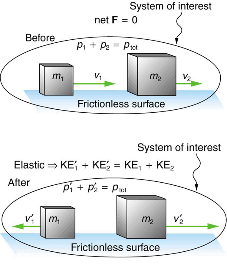 The system of interest contains a smaller mass m sub1 and a larger mass m sub2 moving on a frictionless surface. M sub 2 moves with velocity V sub 2 and momentum p sub 2 and m sub 1 moves behind m sub 2, with velocity V sub 1 and momentum p sub 1 toward the right direction. P 1 plus P 2 equals p total. The net force is zero. After collision m sub 1 moves toward the left with velocity V sub 1 while m sub 2 moves toward the right with velocity V sub 2 on the same frictionless surface. The momentum of m sub 1 becomes p 1 prime and m 2 becomes p 2 prime now. P 1 prime plus p 2 prime equals p total.