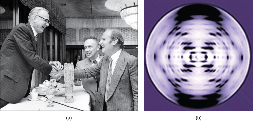 Photo in part A shows James Watson, Francis Crick, and Maclyn McCarty. The x-ray diffraction pattern in part b is symmetrical, with dots in an x-shape.
