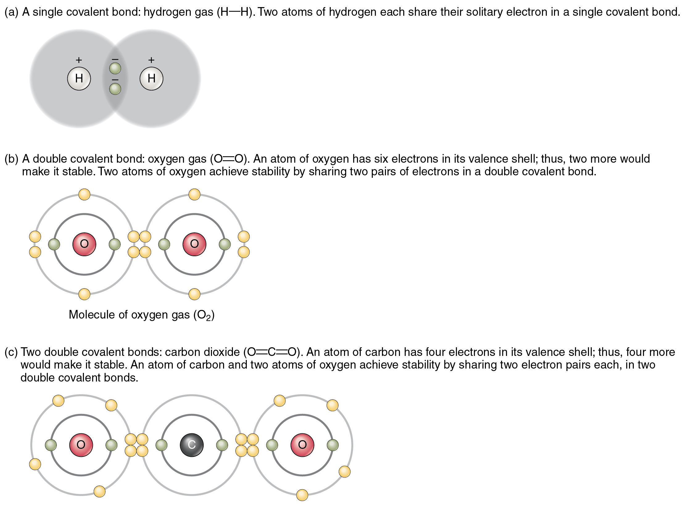 Chapter review, Chemical bonds, By OpenStax (Page 3/20) | QuizOver.com