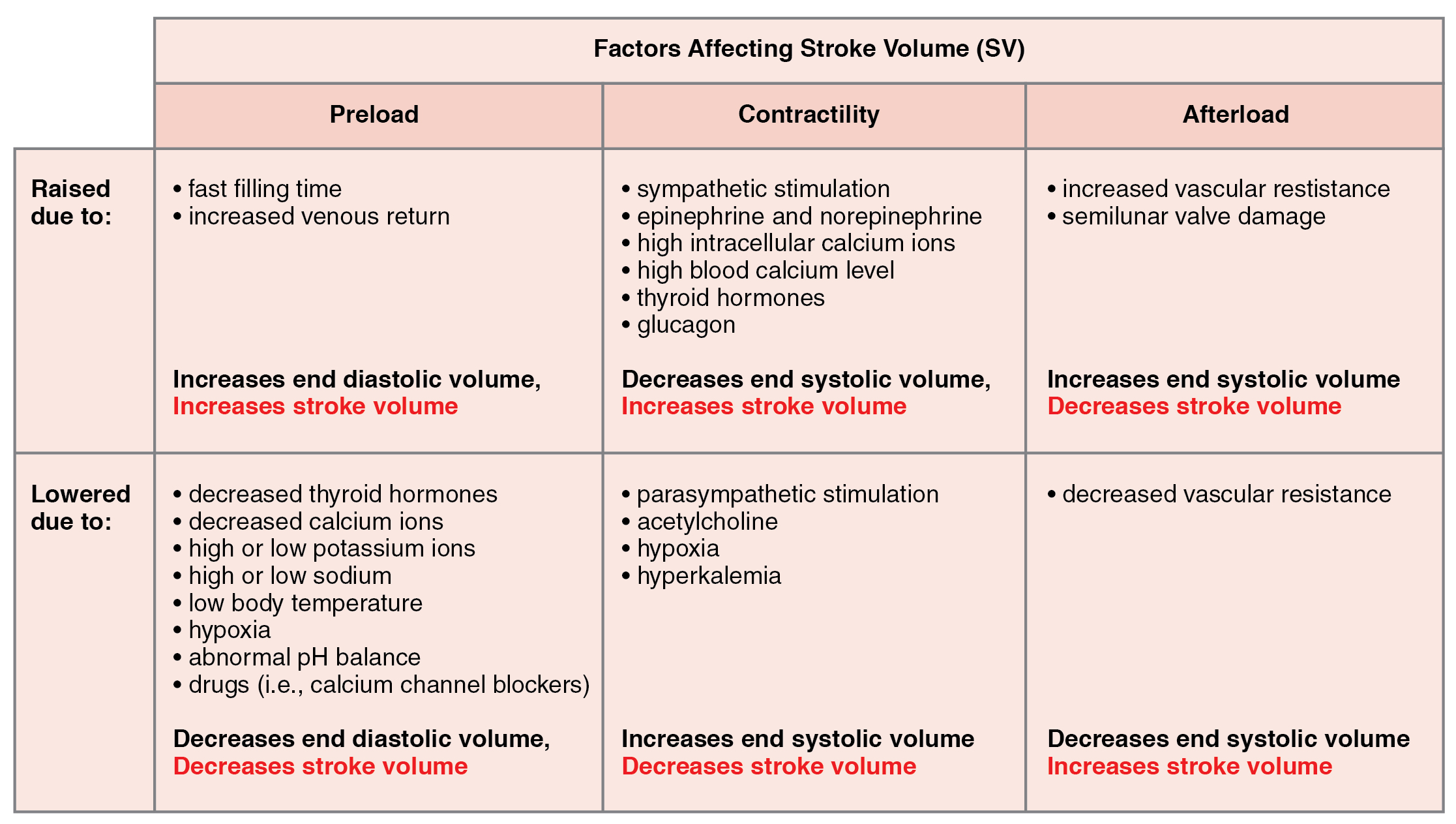 Afterload, Cardiac physiology, By OpenStax (Page 10/34 ...