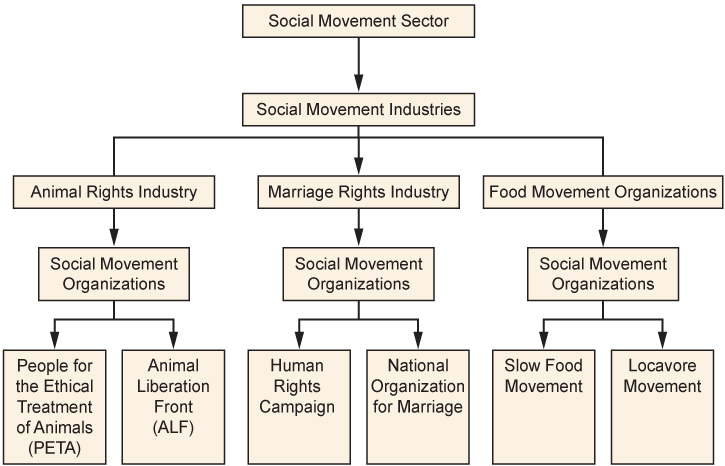 A flow chart summarizing the social movement sector.