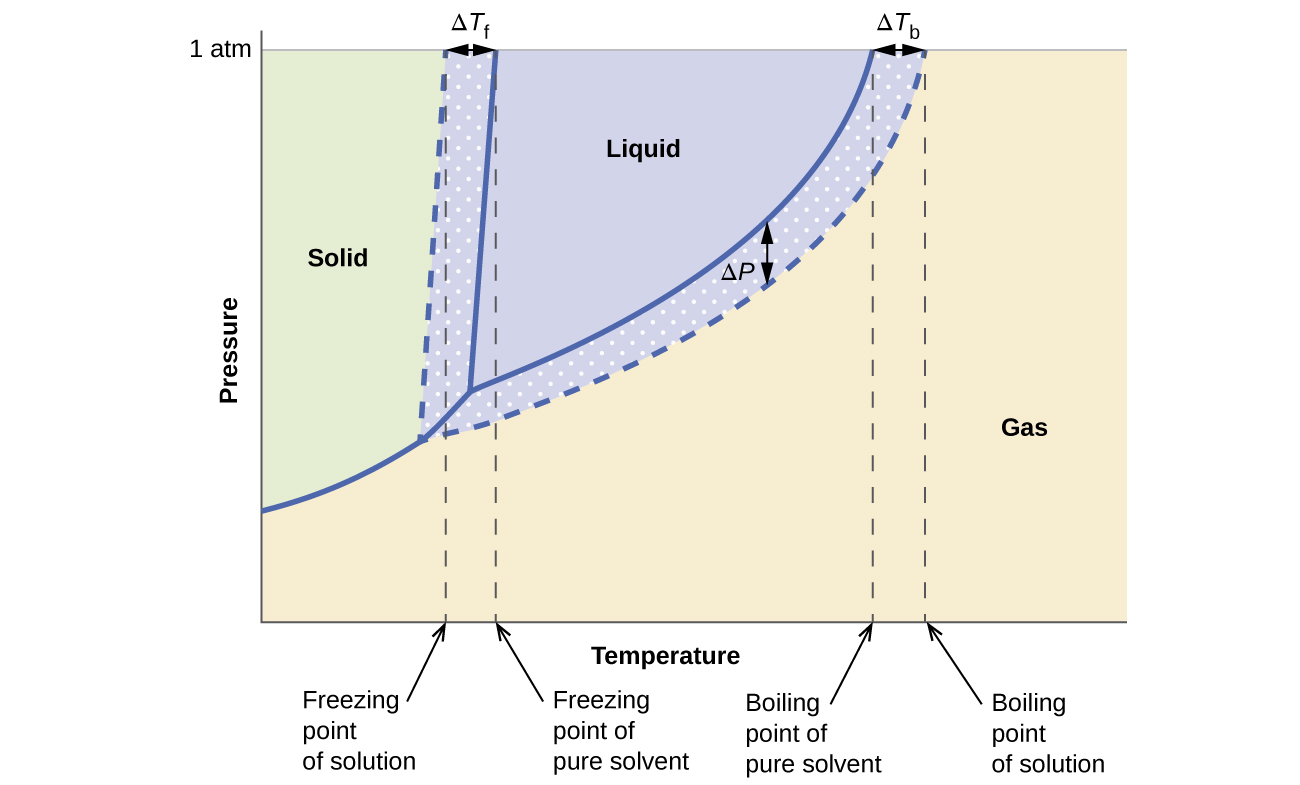 This phase diagram indicates the pressure in atmospheres of water and a solution at various temperatures. The graph shows the freezing point of water and the freezing point of the solution, with the difference between these two values identified as delta T subscript f. The graph shows the boiling point of water and the boiling point of the solution, with the difference between these two values identified as delta T subscript b. Similarly, the difference in the pressure of water and the solution at the boiling point of water is shown and identified as delta P. This difference in pressure is labeled vapor pressure lowering. The lower level of the vapor pressure curve for the solution as opposed to that of pure water shows vapor pressure lowering in the solution. Background colors on the diagram indicate the presence of water and the solution in the solid state to the left, liquid state in the central upper region, and gas to the right.