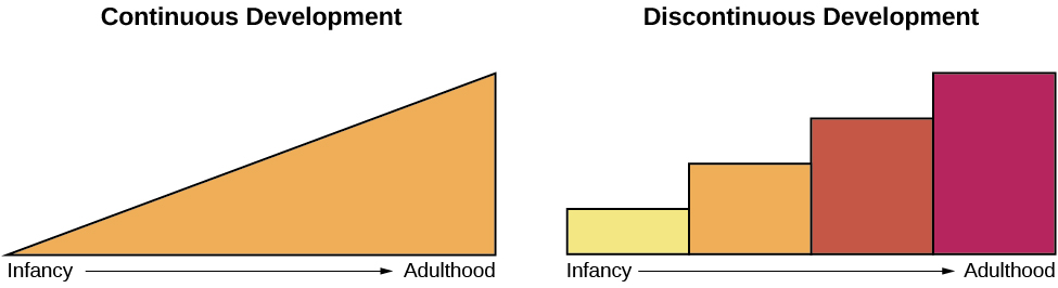 "Continuous and Discontinuous development are shown side by side using two separate pictures. The first picture is a triangle labeled ""Continuous Development"" which slopes upward from Infancy to Adulthood in a straight line. The second picture is 4 bars side by side labeled ""Discontinuous Development"" which get higher from Infancy to Adulthood. These bars resemble a staircase."
