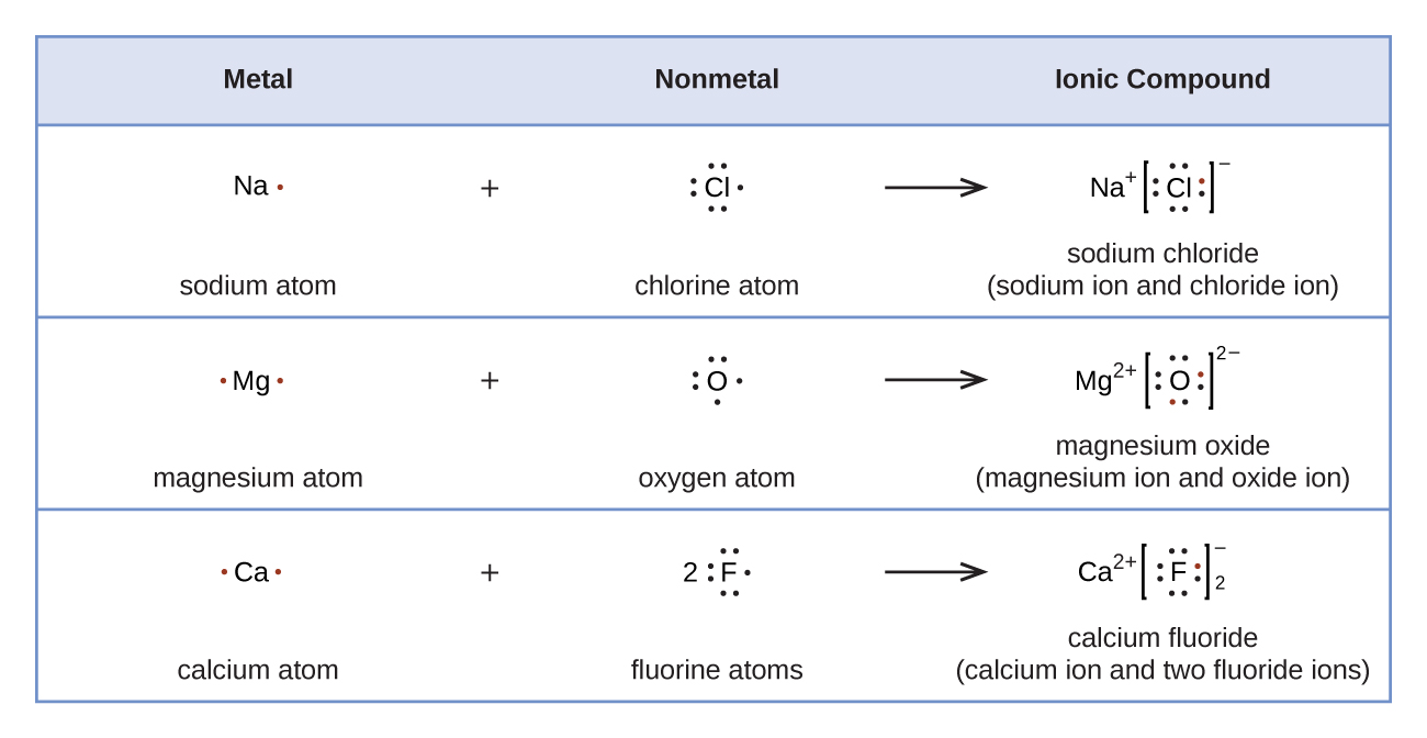"A table is shown with four rows. The header row reads ""Metal,"" ""Nonmetal,"" and ""Ionic Compound."" The second row shows the Lewis structures of a reaction. A sodium symbol with one dot, a plus sign, and a chlorine symbol with seven dots lie to the left of a right-facing arrow. To the right of the arrow a sodium symbol with a superscripted plus sign is drawn next to a chlorine symbol with eight dots surrounded by brackets with a superscripted negative sign. One of the dots on the C l atom is red. The terms ""sodium atom,"" ""chlorine atom,"" and ""sodium chloride ( sodium ion and chloride ion )"" are written under the reaction. The third row shows the Lewis structures of a reaction. A magnesium symbol with two red dots, a plus sign, and an oxygen symbol with six dots lie to the left of a right-facing arrow. To the right of the arrow a magnesium symbol with a superscripted two and a plus sign is drawn next to an oxygen symbol with eight dots, two of which are red, surrounded by brackets with a superscripted two a and a negative sign. The terms ""magnesium atom,"" ""oxygen atom,"" and ""magnesium oxide ( magnesium ion and oxide ion )"" are written under the reaction. The fourth row shows the Lewis structures of a reaction. A calcium symbol with two red dots, a plus sign, and a fluorine symbol with a coefficient of two and seven dots lie to the left of a right-facing arrow. To the right of the arrow a calcium symbol with a superscripted two and a plus sign is drawn next to a fluorine symbol with eight dots, one of which is red, surrounded by brackets with a superscripted negative sign and a subscripted two. The terms ""calcium atom,"" ""fluorine atoms,"" and ""calcium fluoride ( calcium ion and two fluoride ions )"" are written under the reaction."