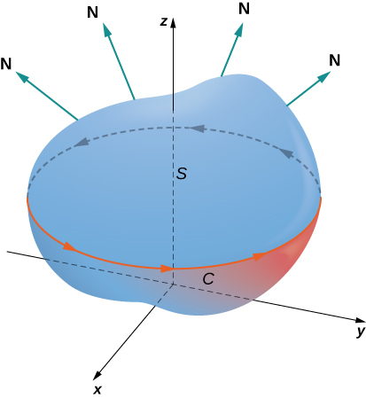 A diagram of a surface S in three dimensions. The orientation of the curve C around its boundary is positive. Various normals are drawn coming off of the surface.