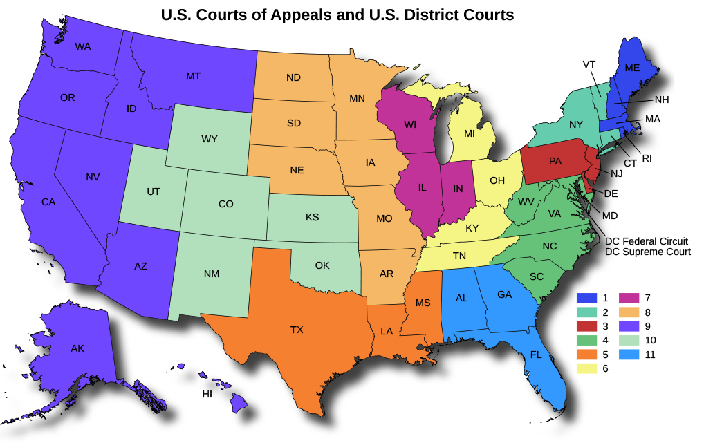 133 The federal court system By OpenStax QuizOvercom
