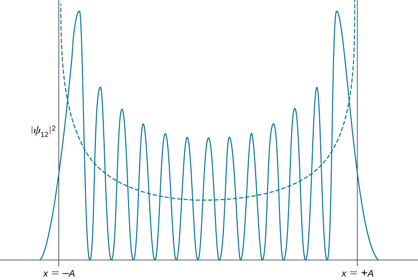 The probability density distribution amplitude squared of Psi sub 12 for the quantum harmonic oscillator is plotted as a function of x as a solid curve. The curve has 13 peaks with 12 zeros between them and goes asymptotically to zero at plus and minus infinity. The amplitude of the peaks is lowest at the center and increases wit distance from the origin. All of the peaks are between x=-A and x=+A. The dashed curve which shows the probability density distribution of a classical oscillator with the same energy is a smooth upward opening curve.