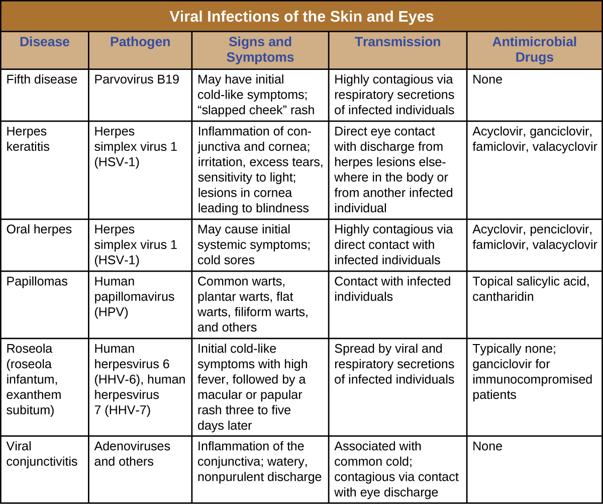Herpes keratitis, Viral infections of the skin and eyes ...