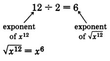 Twelve divided by two is equal to six. There is an arrow pointing  towards twelve that is labeled as