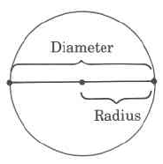 A circle with a line directly through the middle, ending at the edges of the shape. The entire length of the line is labeled diameter, and the length of the portion of the line from the center of the circle to the edge of the circle is labeled radius.