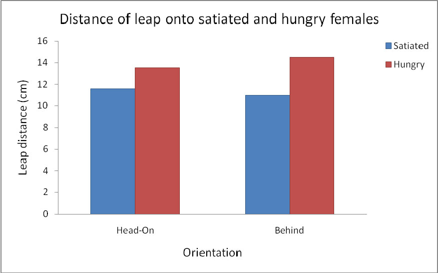 chart comparing female hunger treatment to male approach and leaping distance