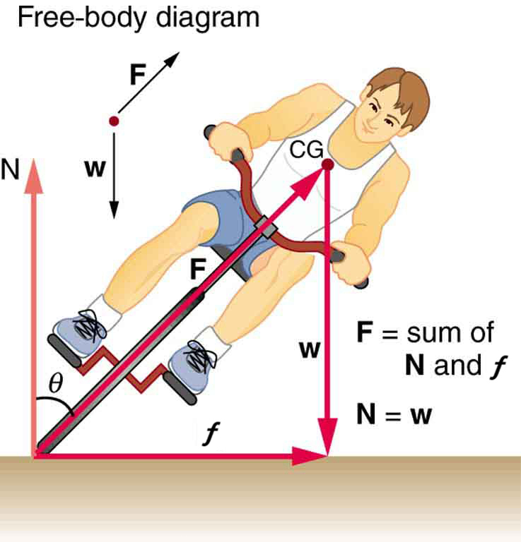 The given figure shows a boy riding a bicycle, from the front. The boy is sliding leftward to his left. Three vectors are shown. One is from the bottom the front cycle wheel to the right depicting centripetal force, another one is from the same point drawn vertically upward showing the force N, making an angle theta with the slope of the front cycle wheel. The third vector is drawn from the chest of the boy to vertically downward to the bottom showing his weight, w. An arrow from the bottom of the wheel to the chest point of the boy is also shown depicting the slope of the bicycle with force F exerting on it. A free-body diagram is also given alongside the figure showing the direction of weight and force vectors. And the values of net F equals to sum of N and centripetal force, and N equals to weight W also given alongside on the right.