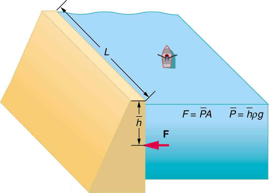 A two-dimensional view of a dam with dimensions L and h is shown. Force F at h is shown by a horizontal arrow. The force F exerted by water on the dam is F equals average pressure p bar into area A and pressure in turn is average height h bar into density rho into acceleration due to gravity g.