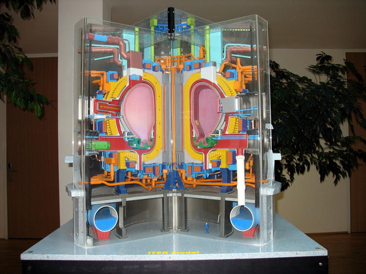 A three-dimensional cut-away model showing the interior of a complex technical device. The device has a central cavity and there are many tubes and connectors arranged around the central cavity.