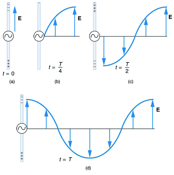 A long straight gray wire with an A C generator at its center, functioning as a broadcast antenna for electromagnetic waves, is shown. The wave distributions at four different times are shown in four different parts. Part a of the diagram shows a long straight gray wire with an A C generator at its center. The time is marked t equals zero. The bottom part of the antenna is positive and the upper end of the antenna is negative. An electric field E acting upward is shown by an upward arrow. Part b of the diagram shows a long straight gray wire with an A C generator at its center. The time is marked t equals capital T divided by four. The antenna has no polarity marked and a wave is shown to emerge from the A C source. An electric field E acting upward as shown by an upward arrow. The electric field E propagates away from the antenna at the speed of light, forming part of the electromagnetic wave from the A C source. A quarter portion of the wave is shown above the horizontal axis. Part c of the diagram shows a long straight gray wire with an A C generator at its center. The time is marked t equals capital T divided by two. The bottom part of the antenna is negative and the upper end of the antenna is positive and a wave is shown to emerge from the A C source. The electric field E propagates away from the antenna at the speed of light, forming part of the electromagnetic wave from the A C source. A quarter portion of the wave is shown below the horizontal axis and a quarter portion of the wave is above the horizontal axis. Part d of the diagram shows a long straight gray wire with an AC generator at its center. The time is marked t equals capital T. The bottom part of the antenna is positive and the upper end of the antenna is negative. A wave is shown to emerge from the A C source. The electric field E propagates away from the antenna at the speed of light, forming part of the electromagnetic wave from the A C source. A quarter portion of the wave is shown above the horizontal axis followed by a half wave below the horizontal axis and then again a quarter of a wave above the horizontal axis.