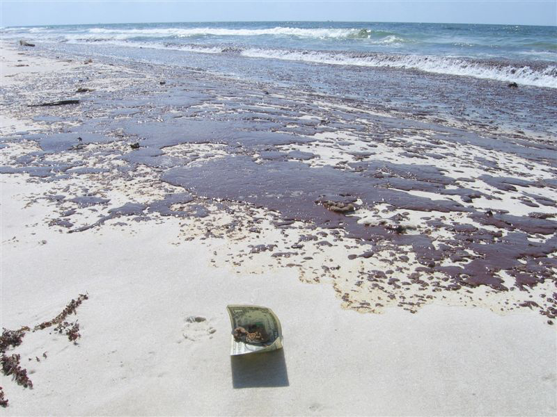 Oil spilled on a beach is shown here.