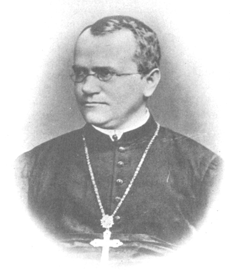 Image is a sketch of Johann Gregor Mendel.