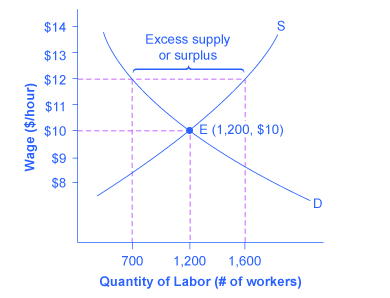 The graph shows how a price floor results from an excess supply of labor.