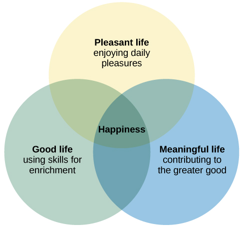 Elements of happiness, The pursuit of happiness, By OpenStax