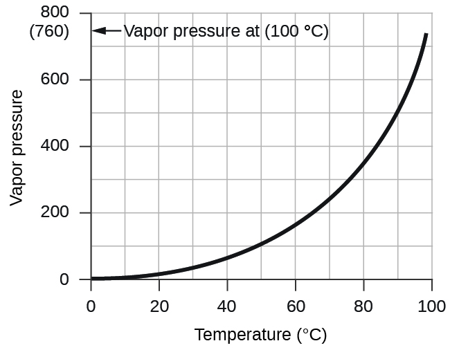 "A graph is shown. The horizontal axis is labeled ""Temperature ( degrees C )"" with markings and labels provided for multiples of 20 beginning at 0 and ending at 100. The vertical axis is labeled ""Vapor pressure ( torr )"" with marking and labels provided for multiples of 200, beginning at 0 and ending at 800. A smooth solid black curve extends from the origin up and to the right across the graph. The graph shows a positive trend with an increasing rate of change. On the vertical axis is ( 7 60) and an arrow pointing to it. The arrow is labeled, ""Vapor pressure at ( 100 degrees C )."""