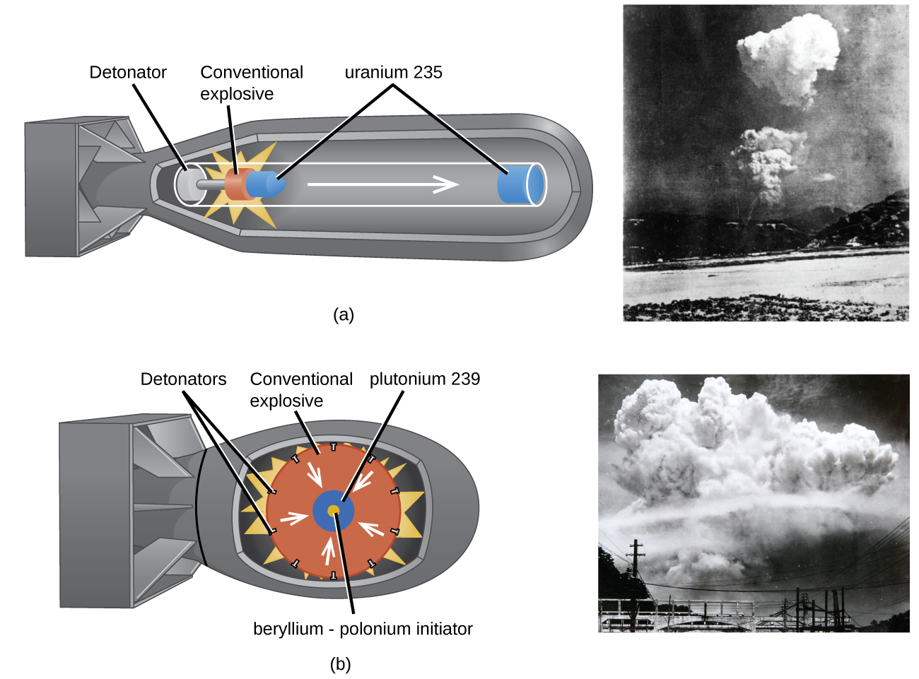 "Two diagrams are shown, each to the left of a photo, and labeled ""a"" and ""b."" Diagram a shows the outer casing of a bomb that has a long, tubular shape with a squared-off tail. Components in the shell show a tube with a white disk labeled ""Detonator"" on the left, an orange disk with a bright yellow starburst drawn around it labeled ""Conventional explosive"" in the middle and a right-facing arrow leading to a blue disk in the nose of the bomb labeled ""uranium 235."" A small blue cone next to the orange disk is shares the label of ""uranium 235."" A black and white photo next to this diagram shows a far-off shot of a rising cloud over a landscape. Diagram b shows the outer casing of a bomb that has a short, rounded shape with a squared-off tail. Components in the shell show a large orange circle labeled ""Conventional explosive"" with a series of black dots around its edge, labeled ""Detonators,"" and a yellow starburst behind it. White arrows face from the outer edge of the orange circle to a blue circle in the center with a yellow core. The blue circle is labeled ""plutonium 239"" while the yellow core is labeled ""beryllium, dash, polonium initiator."" A black and white photo next to this diagram shows a far-off shot of a giant rising cloud over a landscape."