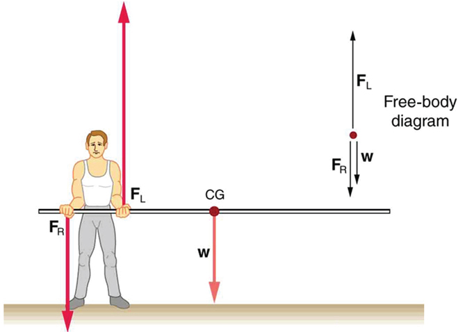 A pole vaulter is standing on the ground holding a pole from one side with his two hands. The centre of gravity of the pole is to the left of the pole vaulter. The weight W is shown as an arrow downward at center of gravity. The reaction F sub R is shown with a vector pointing downward from the man's right hand and F sub L is shown with a vector in upward direction at the location of the man's left hand. A free body diagram of the situation is shown on the top right side of the figure.