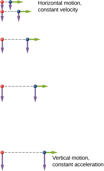 Two identical balls are illustrated at 5 locations at equal time intervals. The balls start at the same vertical position. Green arrows represent the horizontal velocities and purple arrows represent the vertical velocities at each position. The ball on the right has an initial horizontal velocity whereas the ball on the left has no horizontal velocity. The horizontal motion is constant horizontal velocity at all times for both balls. The vertical motion is constant vertical acceleration. Each ball's vertical velocity is increasing in magnitude and pointing down. At each instant in time, both balls have identical vertical positions and vertical velocities.