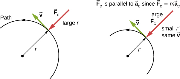 The figure consists of two semicircles. The semicircle on the left has radius r and bigger than the one on the right, which has radius r prime. In both the figures, the direction of the motion is given as counter-clockwise along the semicircles. A point is shown on the path, where the radius is shown with an arrow pointing out from the center of the semicircle. At the same point, the centripetal force, F sub c, is shown pointing inward, in the opposite direction to that of radius arrow. The velocity, v, is shown at this point as well, and it is tangent to the semicircle, pointing left and up, perpendicular to the forces. In both the figures, the velocity is same, but the radius prime is smaller and centripetal force is larger in the figure on the right. It is noted that vector F sub c is parallel to vector a sub c since vector F sub c equals m times vector a sub c.