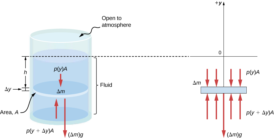 Figure A is a schematic drawing of a cylinder filled with fluid and open to the atmosphere on the top. A disk of mass Delta m, surface area A identical to the surface area of the cylinder, and height Delta y is placed in the fluid. A fluid of height h is located above the disk. Figure B is a schematic drawing of the force Delta m x g expressed by the disk, p (y) x A applied by the fluid above the disk, and p (y + Delta y) x A applied by the fluid below the disk.