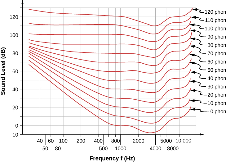 The graph is the plot of sound level in decibels versus frequency in Herz. Data for 0, 10, 20, 30, 40, 50, 60, 70, 80, 90, 100, 110, and 120 phons is plotted. Data is plotted as curved lines stacked one a top of other.