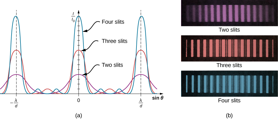 Picture A shows a graph for the interference fringe patterns for two, three and four slits. As the number of slits increases, more secondary maxima appear, but the principal maxima become narrower. Picture B shows photographs of fringe patterns for two, three and four slits. As the number of slits increases, more secondary maxima appear, but the principal maxima become brighter.